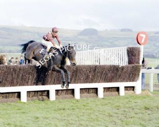 Davy Lad with D T Hughes (682-01)